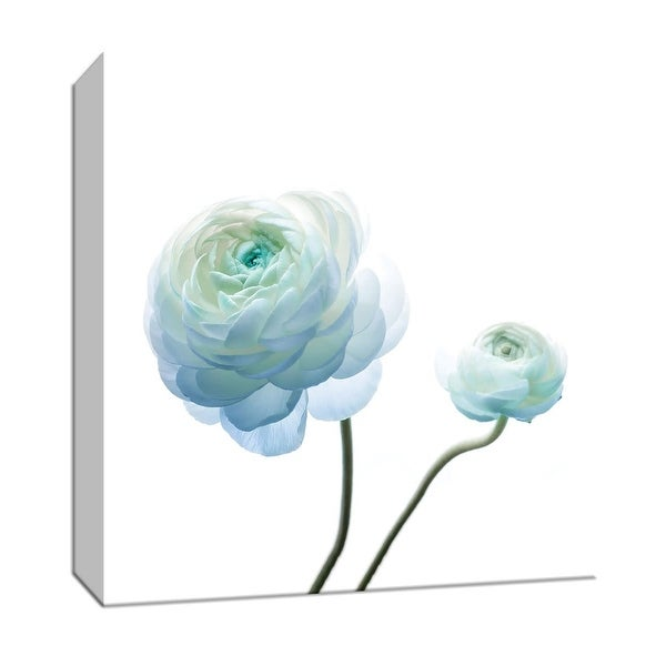 "PTM Images 9-147541 PTM Canvas Collection 12"" x 12"" - ""Gorgeous Blue I"" Giclee Flowers Art Print on Canvas"