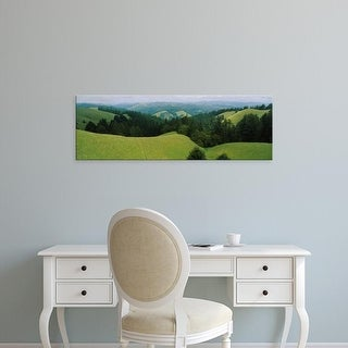 Easy Art Prints Panoramic Images's 'Pine trees on a rolling landscape, California, USA' Premium Canvas Art