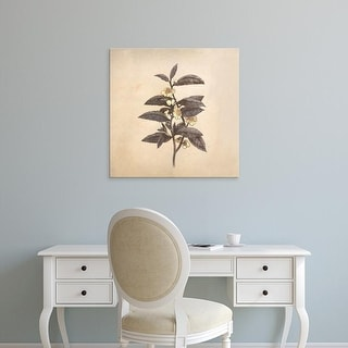 Easy Art Prints Terry Fan's 'Blooming' Premium Canvas Art