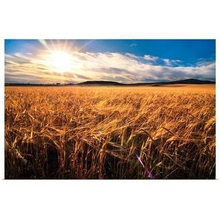 """Wheat field"" Poster Print"