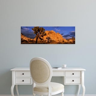 Easy Art Prints Panoramic Image 'Rock formations on a landscape, Joshua Tree National Park, California' Canvas Art