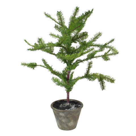"22"" Green Artificial Mini Pine Tree in Paper Mache Pot"