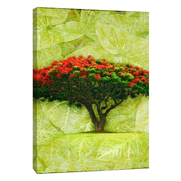 "PTM Images 9-108633 PTM Canvas Collection 10"" x 8"" - ""Royal Poinciana"" Giclee Flowers Art Print on Canvas"