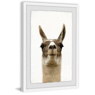 "Marmont Hill MH-PEKABO-04-WFPFL-45 45 Inch x 30 Inch ""Llama Face"" Framed Giclee - N/A"