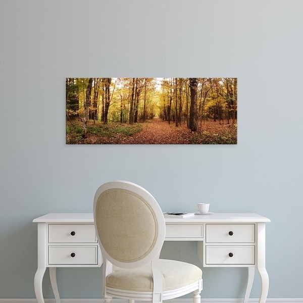 Easy Art Prints Panoramic Images's 'Trail through Catskills in Kaaterskill Falls in Autumn, New York State' Canvas Art