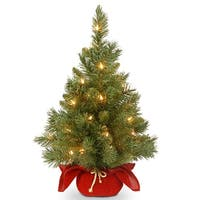 2' Pre-lit Potted Majestic Fir Tree Artificial Christmas Tree in Burgundy Cloth Bag – Clear Lights - 2 Foot
