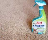 Dog Odor & Stain Removals