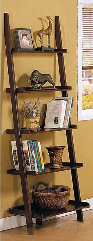 Well decorated ladder bookshelf
