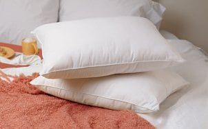 Two brand new down filled pillows