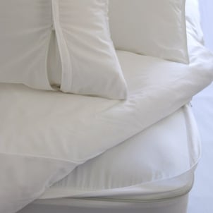 Clean mattress protected from bedbugs with a mattress cover