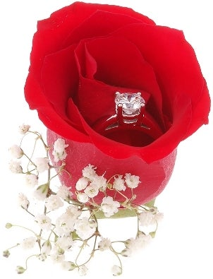 A stunning solitaire cubic zirconia engagement ring in a red rose