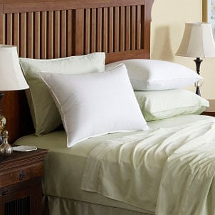 Bed pillows can harbor allergens