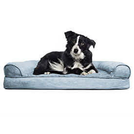 up to extra 10% off,pet supplies*