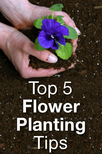 Top 5 Flower Planting Tips from Overstock™. Planting a flower garden certainly makes your yard more beautiful, but it can also be an enjoyable way to pass a warm afternoon.