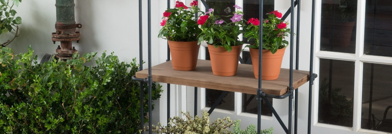Garden Accent Guide