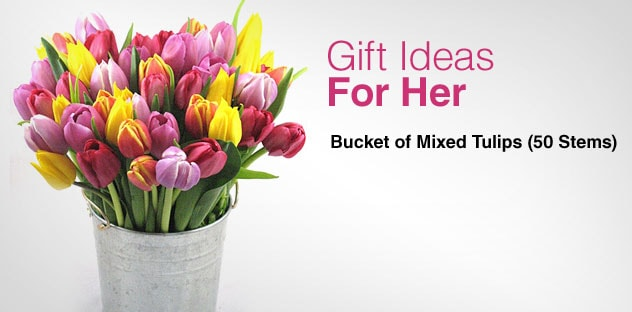 Gift Ideas for Her - Day 6 - Bucket of Mixed Tulips (50 Stems)