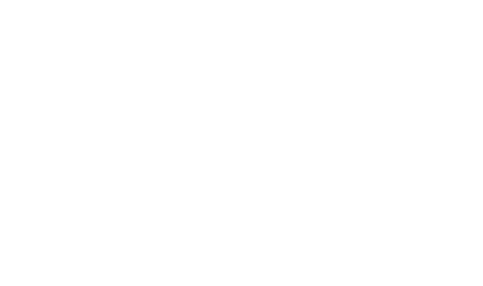 Bret Michaels Live