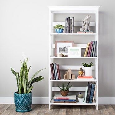 White bookcase with accents, books, shelf decor, and plants