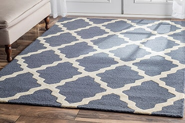 Blue and cream rug with settee and French doors