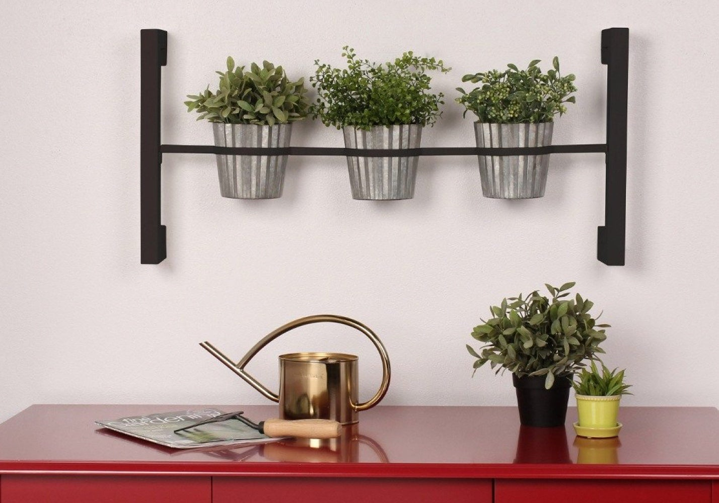 Close up of potted plants and gardening accessories
