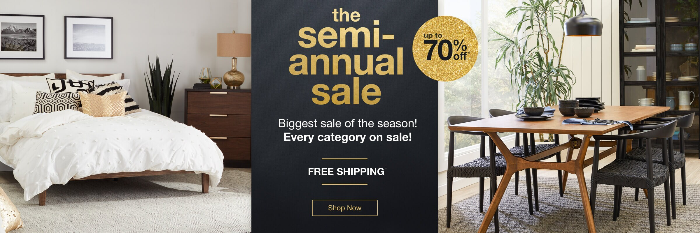 The Semi-Annual Sale desktop