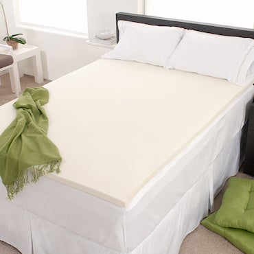 Eliminate Bed Bugs and Microbes