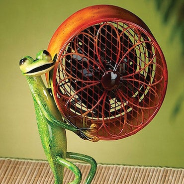 A Frog Holding a Desk Fan