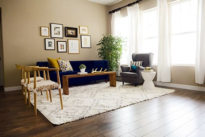 Living room with area rug and furniture