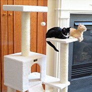 Select Cat Trees