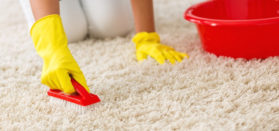 Woman Cleaning Carpets