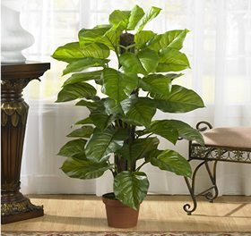 A silk plant perfect to place in your entryway
