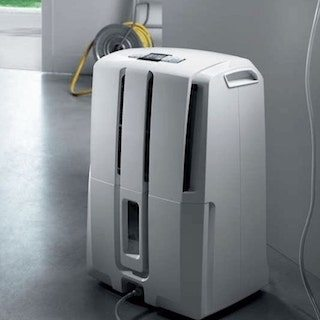 Tips on when to use a dehumidifier overstock