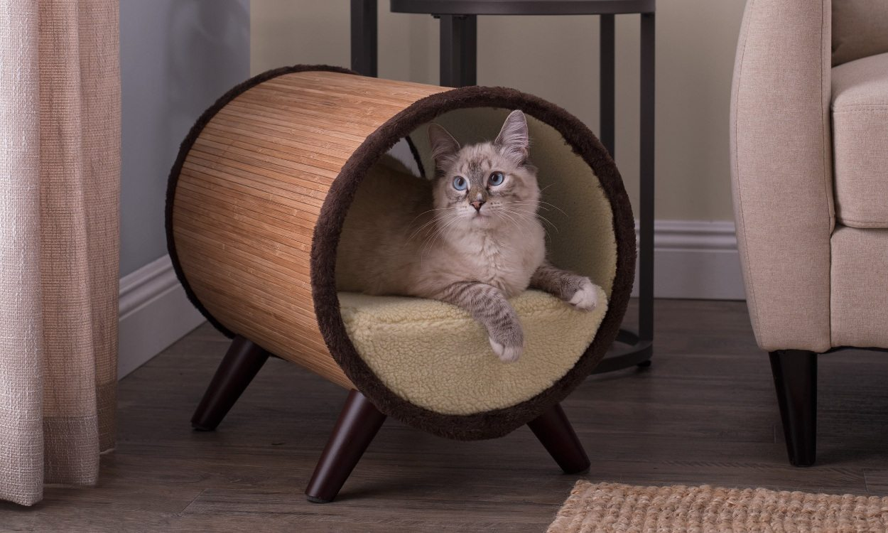 401443329 The Top 5 Places to Put Cat Beds - Overstock.com