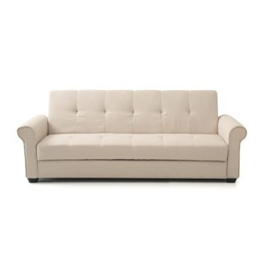 A sleeper sofa, type of furniture for your living room