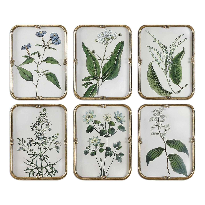 Framed plant artwork.