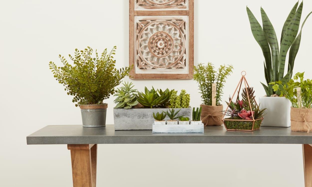 Artificial Silk Plants