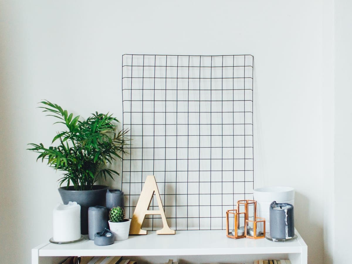 White Bookcase With a Plant and Decor