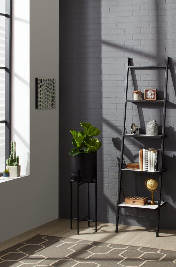 Room showing a black bookcase and a black planter with stand