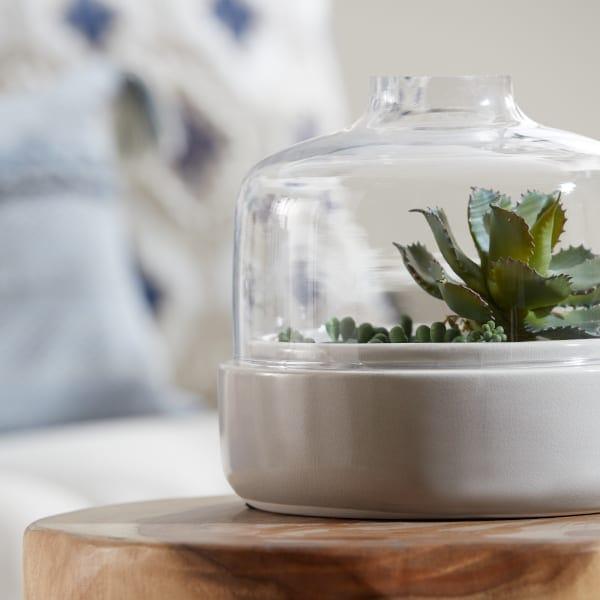 Glass terrarium with a ceramic base.