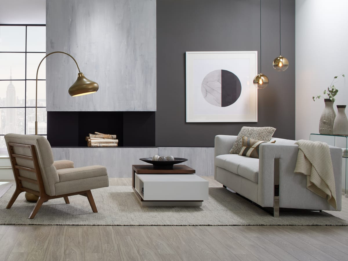 Living room showing a modern and contemporary rug
