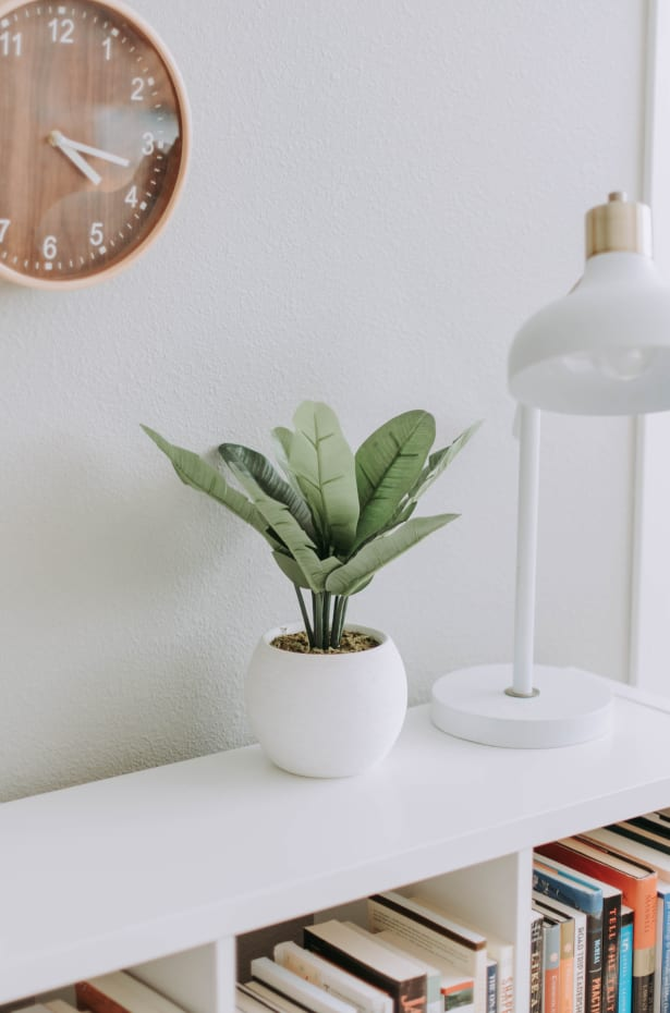 Lagom at Home: Replace Clutter With Plants