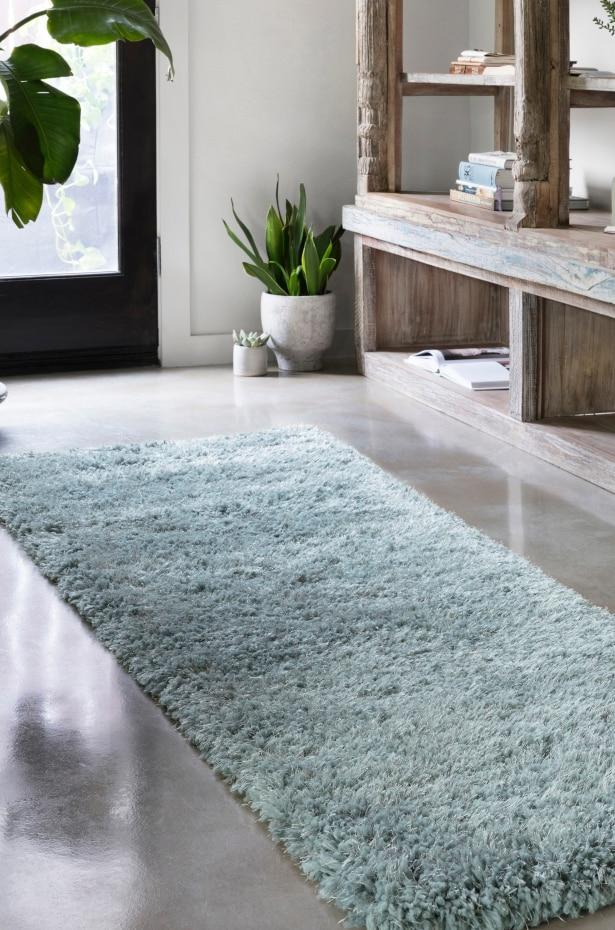 Blue shag runner rug placed in a hallway