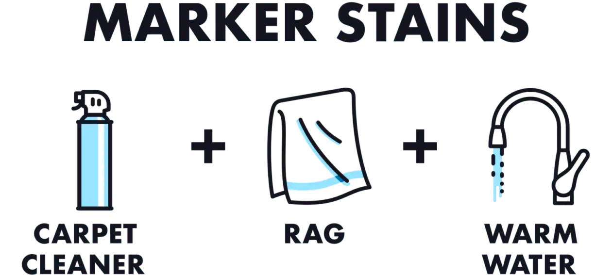 An infographic showing you how to remove a marker stain from a wool rug, you'll need carpet cleaner, a rag, and warm water